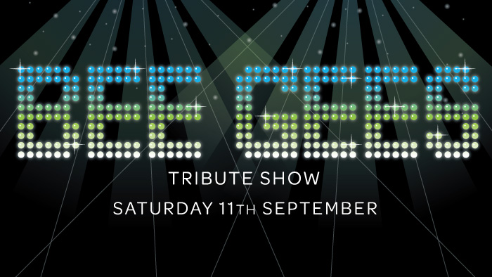 bee-gees-tribute-show-2